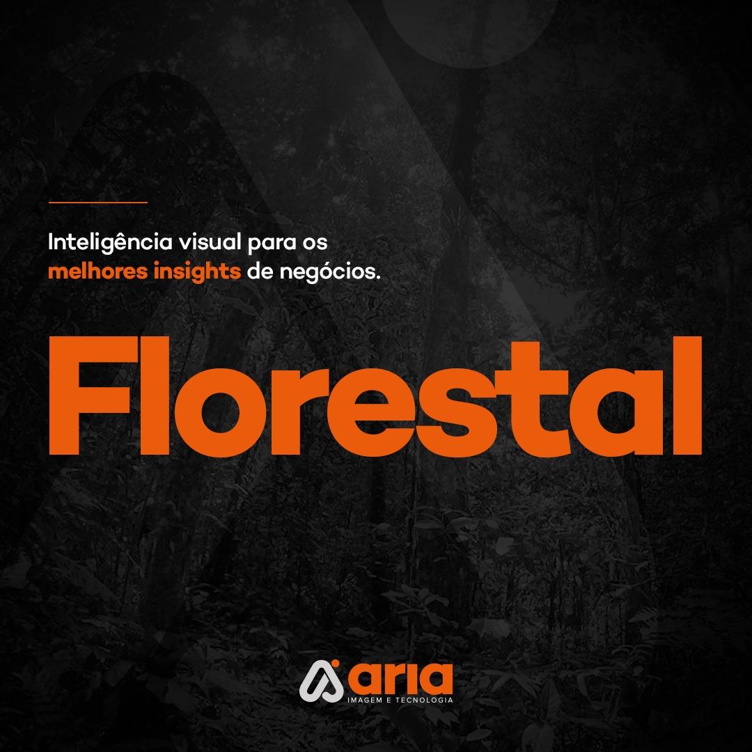 Inteligência visual para os melhores insights de negócios: Florestal